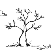Illustration af et træ